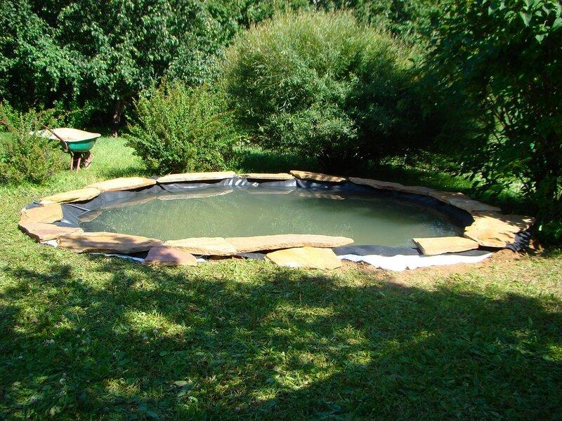 Шаг 4.  Наливаем воду и обкладываем берег плитняком. Весь камень перед укладкой нужно промывать, чтобы потом грязь с него не текла в пруд.