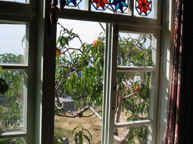 Вид из окна. Краснокаменка, дом Османа