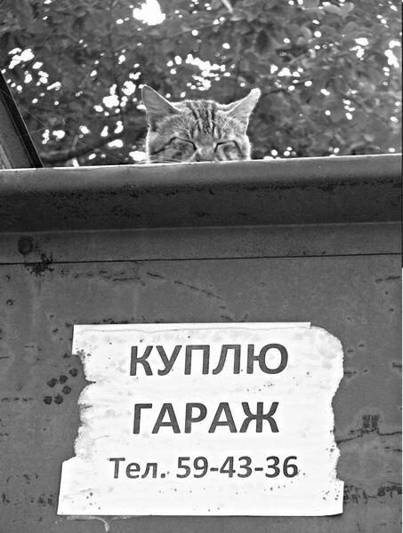 http://img-fotki.yandex.ru/get/3512/yonkis.2c/0_12b25_a5e95714_XL.jpg