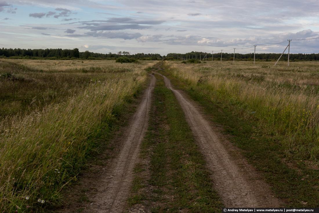 Дорога уходящая в лес