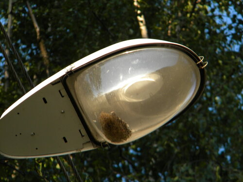 В лампе
