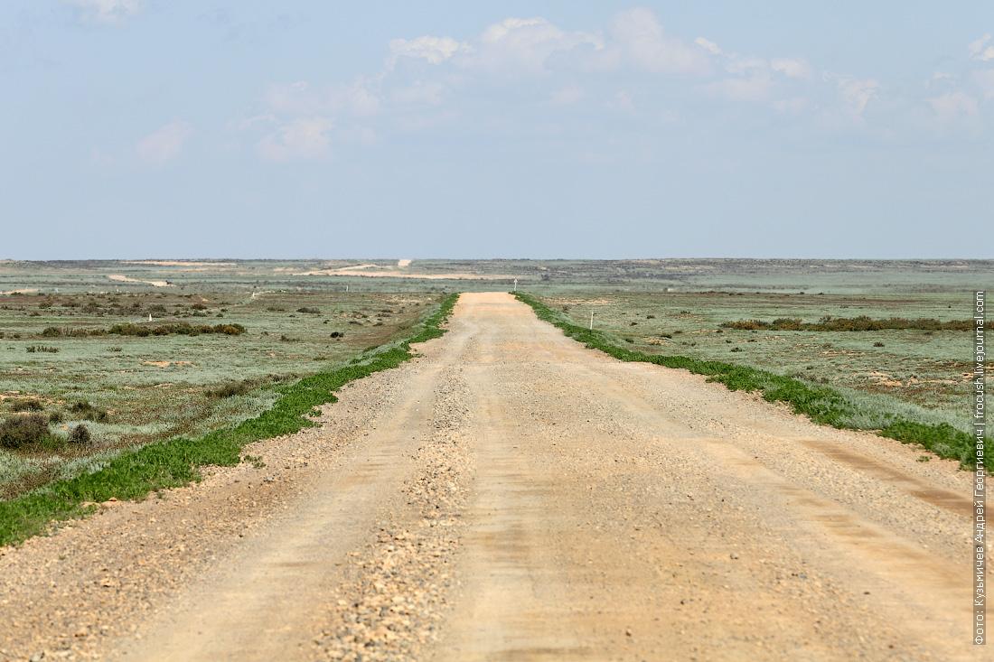 грунтовая дорога в казахской степи