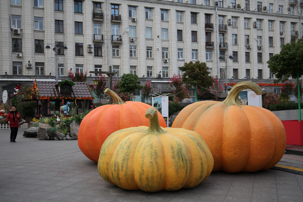 3. Так, гигантские тыквы можно найти на Тверской площади.