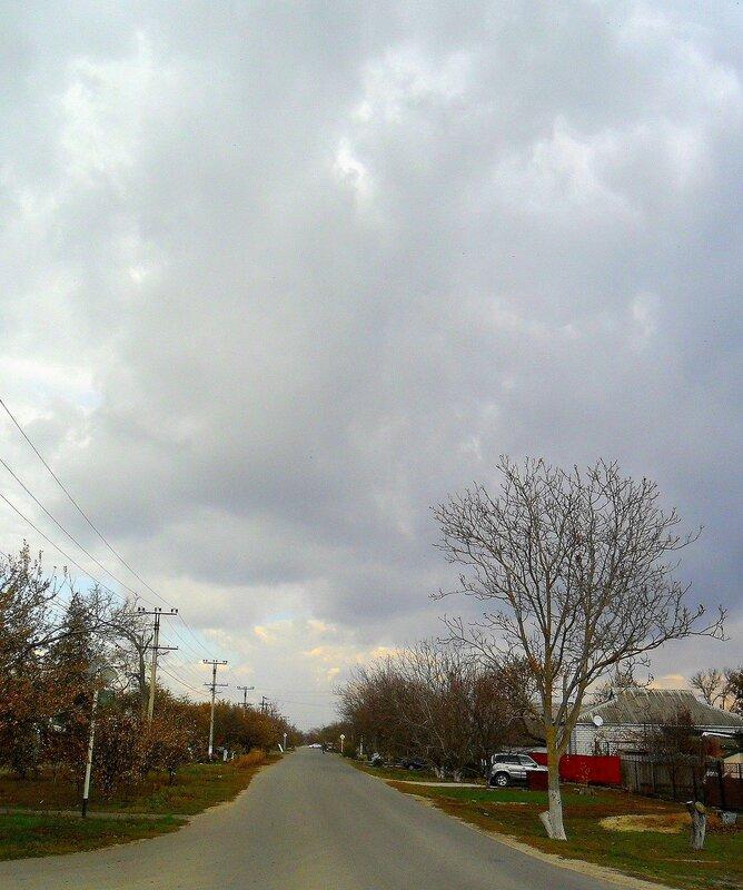 Под небом хмурым ... SAM_4449.JPG