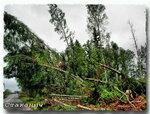 2009 После урагана.jpg