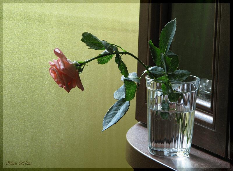 Автор схемы. malkinaiv.