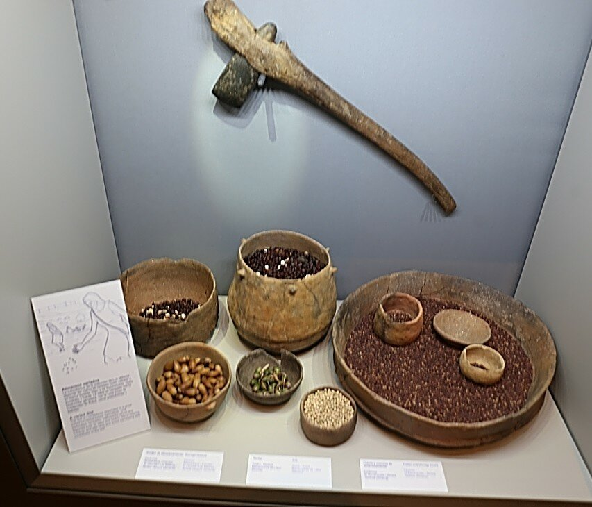 Museum of Almería (Museo Arqueológico de Almería)