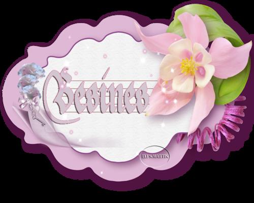 Tarjeta rosa con flores 0_1660f5_7348c0c7_L