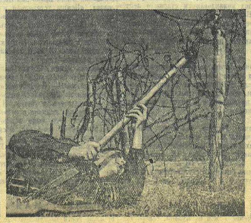 «Красная звезда»а, 8 мая 1943 года