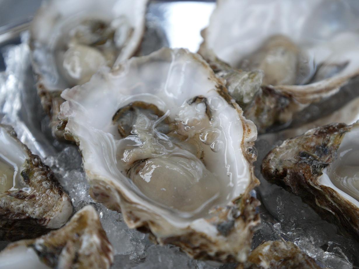 Устрицы. Известный во всём мире деликатес. Моллюски, спрыснутые лимонным соком, употребляются жи