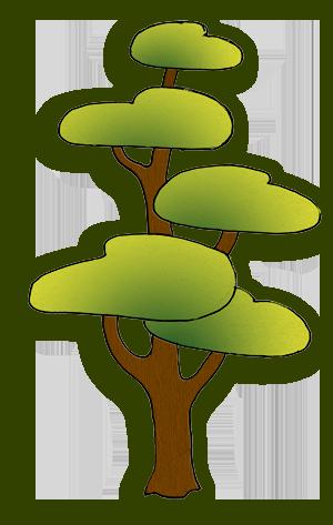 Дерево - Сосна. С обработкой в Photoshop-е