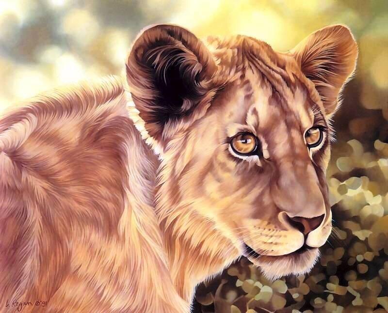 Видео, картинки рисунки животные