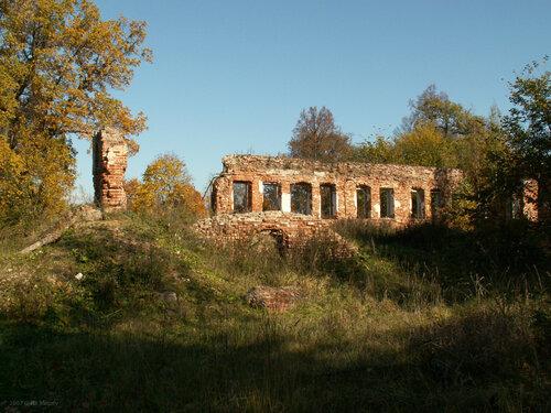 Борщёвка, главный дом в 2007 г.