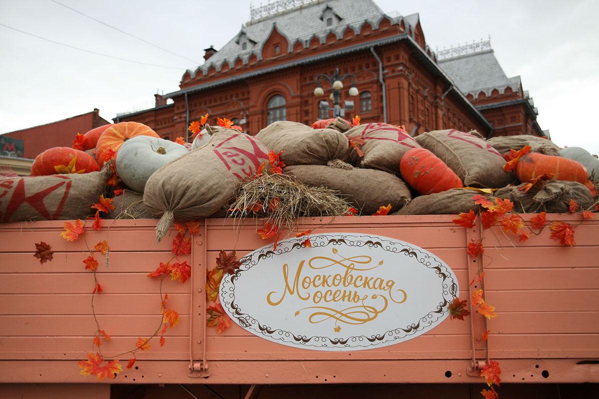 2. Специально для украшения площадок «Московской осени» из регионов привезли 40 тонн тыкв! А некотор