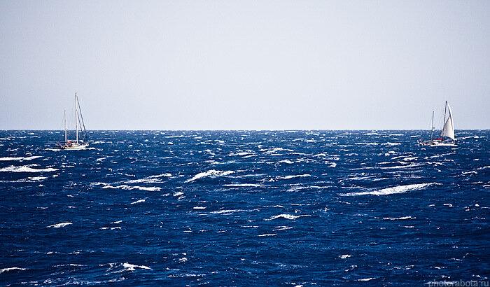 Яхты, Красное море