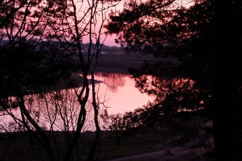 dubkov — «Лес после заката» на Яндекс.Фотках