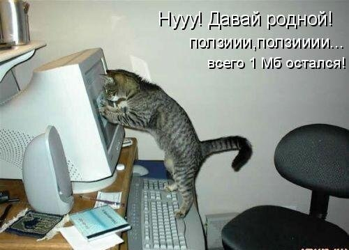 ♥°• Lenk@ •°♥ — «42908382_1240426606_1238196985_1237937599_kotomatrix_14.jpg» на Яндекс.Фотках