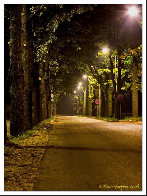 Ночная улочка на окраине Елгавы. Удивила частота одинаковых знаков - на улице нет перекрёстков