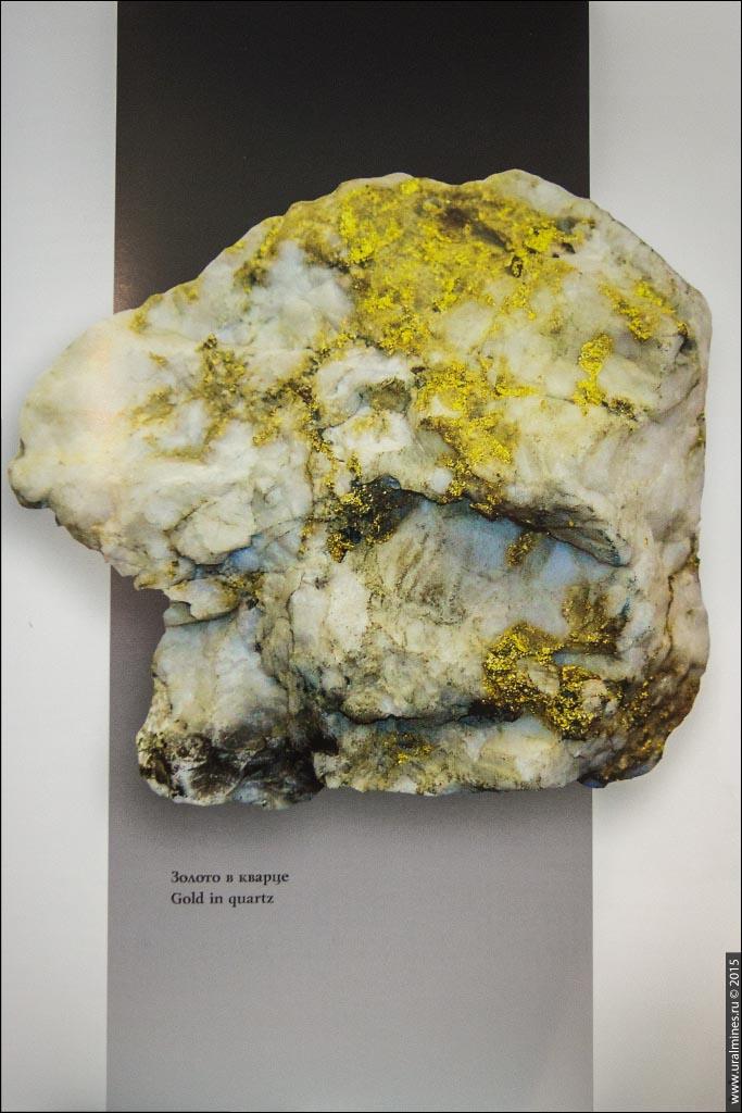 Книга Первое золото России