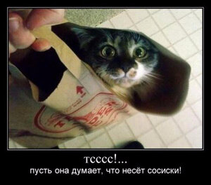 https://img-fotki.yandex.ru/get/3602/194408087.12/0_10140f_5fb6b671_M.jpg