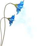 Flowers2-GI_DarknessSparkles.png