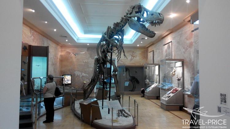 Динозавры в музее естественной истории