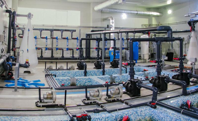 Лаборатория по очистке воды
