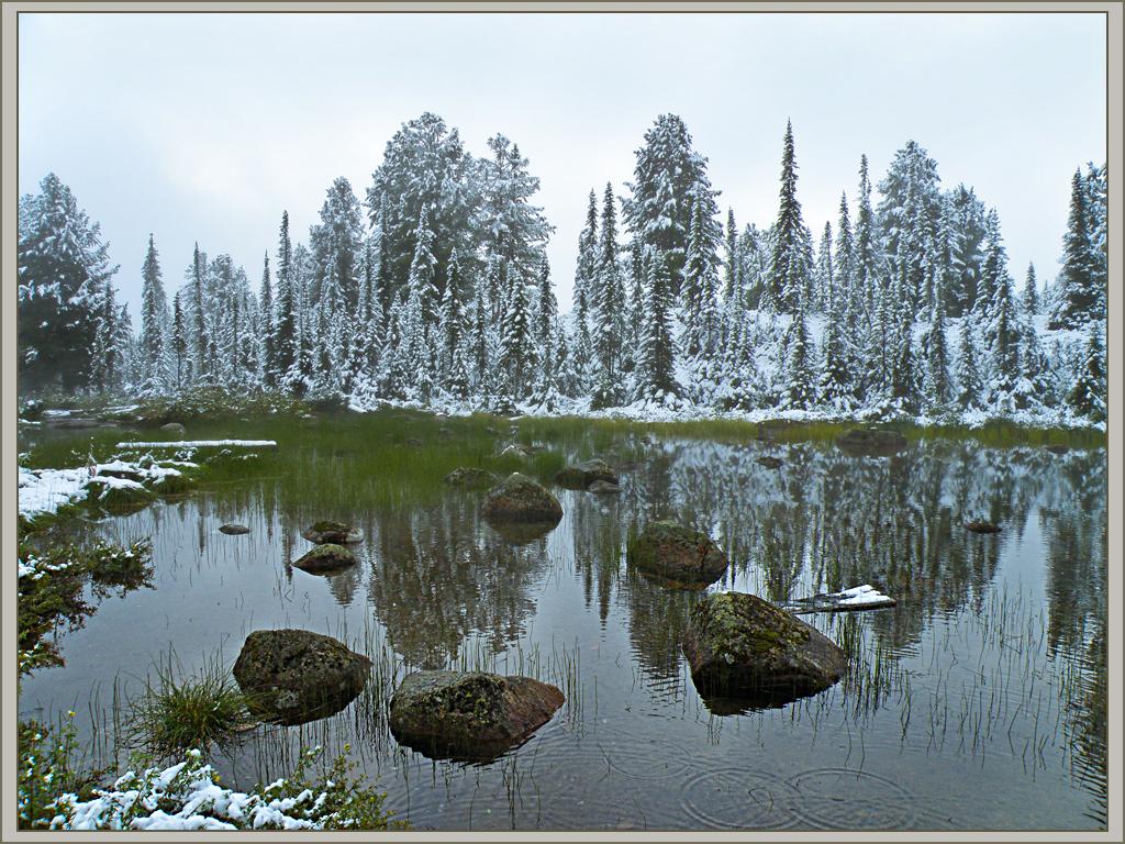 Первый летний снег украсил тайгу