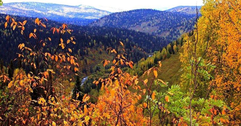 IMG_0270.в.JPG Осенний пейзаж