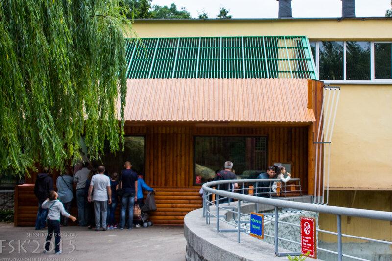 kyiv_zoo-72.jpg