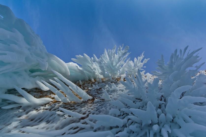 Фото: Алексей Трофимов «Ледяные кораллы»