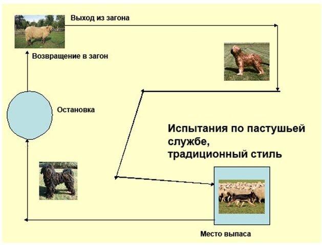 Пастьба - фото, видео, впечатления - Страница 25 0_aafbe_5ce23bc5_XL