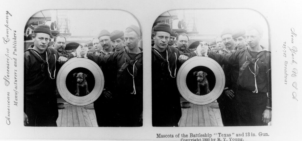 USS Texas (1895-1911) Crewmen pose with mascot dog and cat at the muzzle of one of the ship's 12/35 guns. The original photograph was copyrighted in 1900 by R.Y. Young