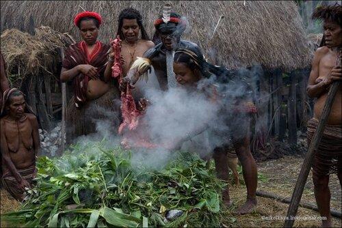 Племя Дани
