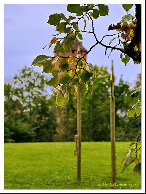 Осень в Сигулде