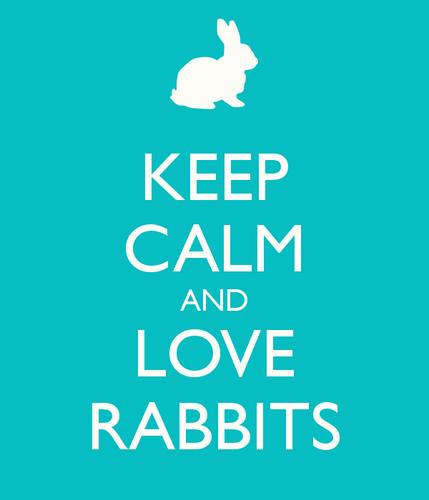 Сохраняйте спокойствие и любите кроликов.png