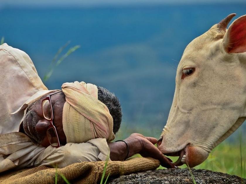 Лучшие фото недели отNational Geographic 0 141be2 47de5c4a orig