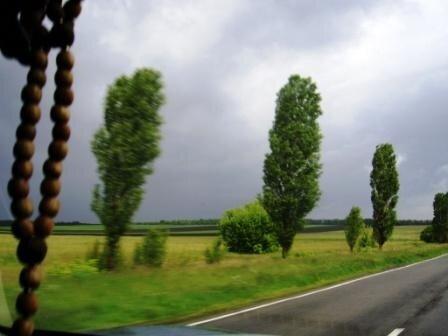Oleno4ka7 — «Путь домой.вид из окошка автомобиля в движении.» на Яндекс.Фотках