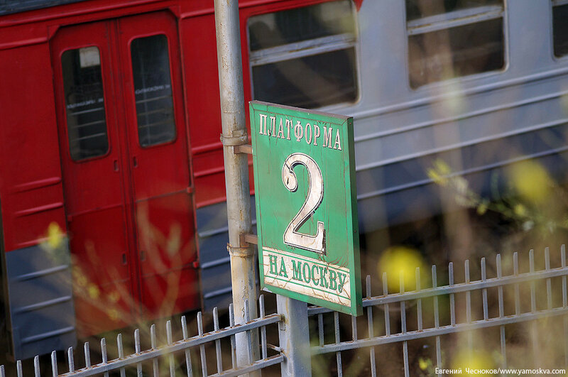 16. Платформа Беговая. 11.08.15.08..jpg