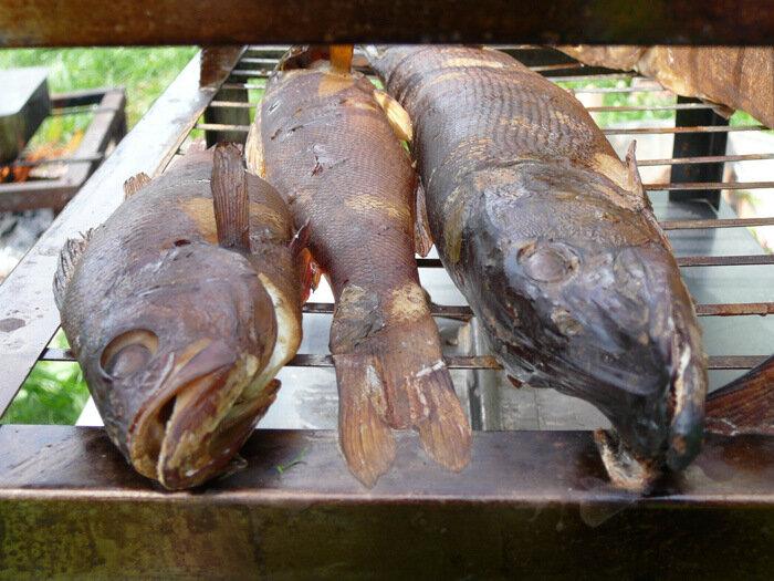 Рыба_3.jpg