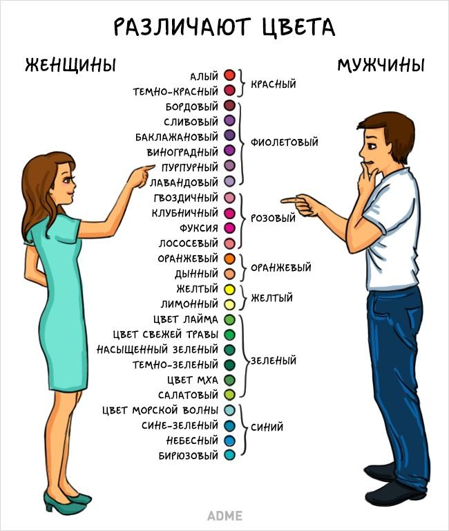 Мужчины иженщины— мытакие разные