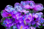 https://img-fotki.yandex.ru/get/3609/39663434.863/0_a9d4a_d33a5aa9_S.png