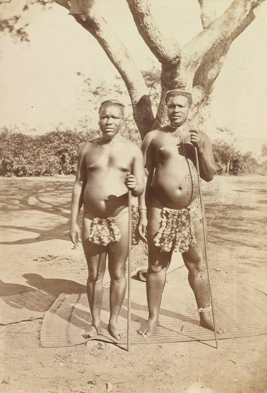 Ндабуко Мадун и Шингaнa. Они были родственниками Кечвайо