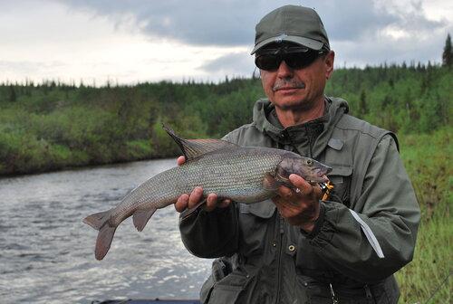рыбалка по притокам енисея на хариуса видео