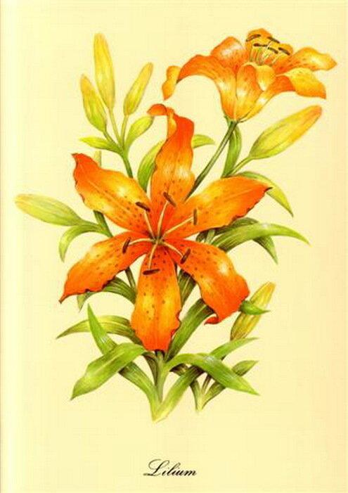 Нарисованные цветы обсуждение на