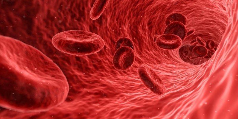 Ученые: Наличие рака можно определить поуровню тромбоцитов вкрови