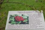 MURZ3301.jpg