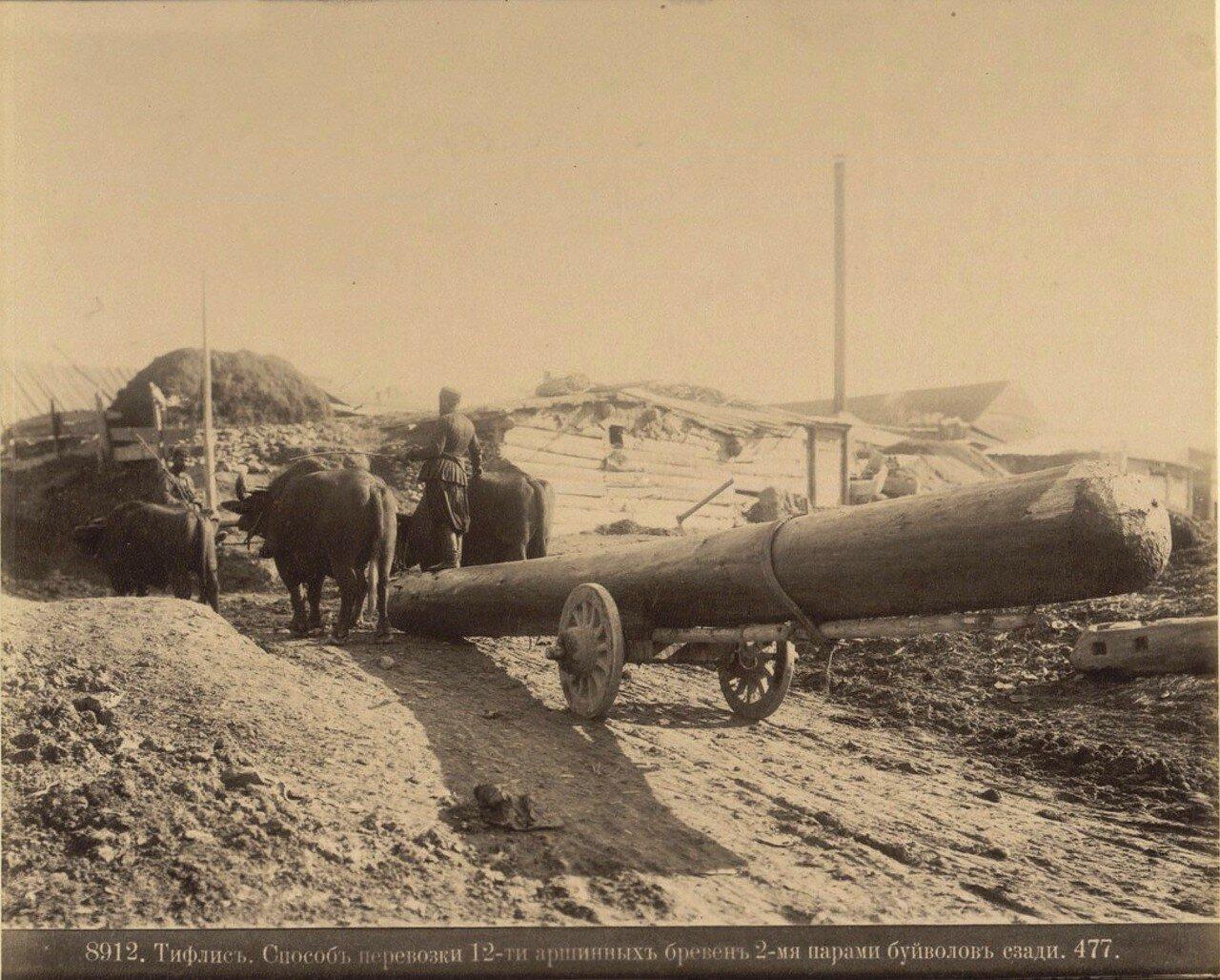 Тифлис. Способ перевозки 12-ти аршинных бревен 2-мя парами буйволов сзади. 1890
