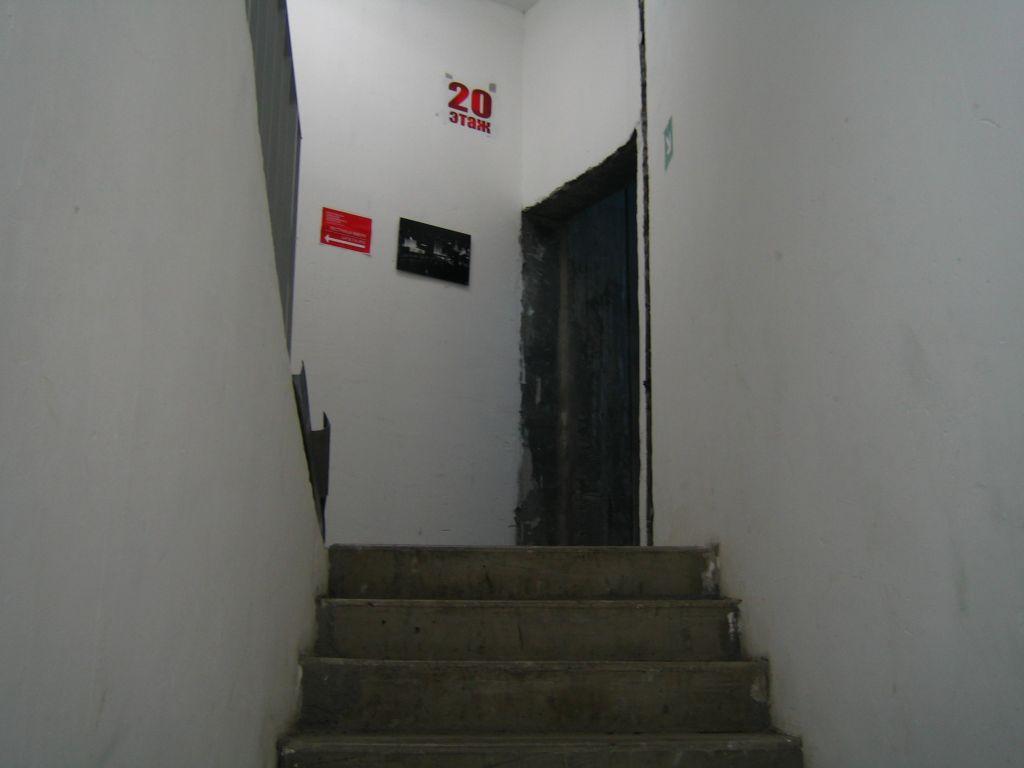 Биеннале 2007