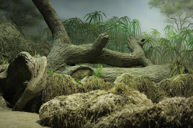 Террариум 2009
